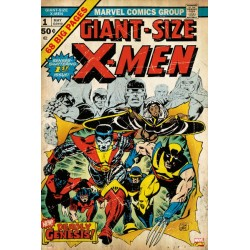 Maxi Poster MARVEL - X-Men